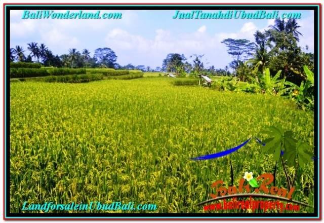 Affordable LAND FOR SALE IN UBUD TJUB667