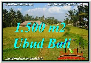 Magnificent PROPERTY 1,500 m2 LAND SALE IN UBUD TEGALALANG TJUB668