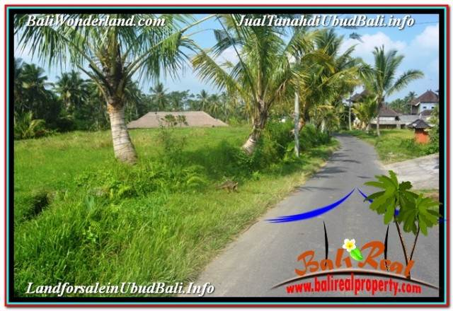 Exotic 1,500 m2 LAND FOR SALE IN UBUD TEGALALANG TJUB668