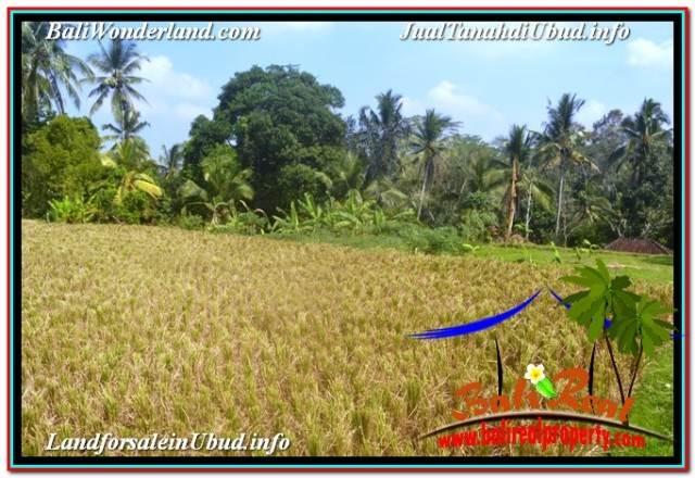 Magnificent LAND SALE IN UBUD TJUB669