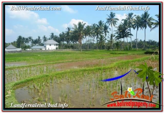 Beautiful 1,100 m2 LAND SALE IN SENTRAL UBUD TJUB670