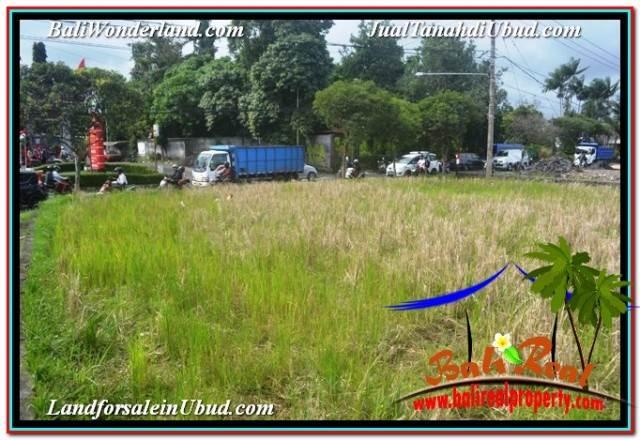 Affordable PROPERTY LAND IN UBUD BALI FOR SALE TJUB671