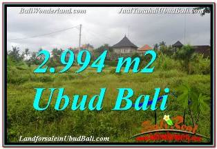FOR SALE Beautiful LAND IN UBUD TJUB672