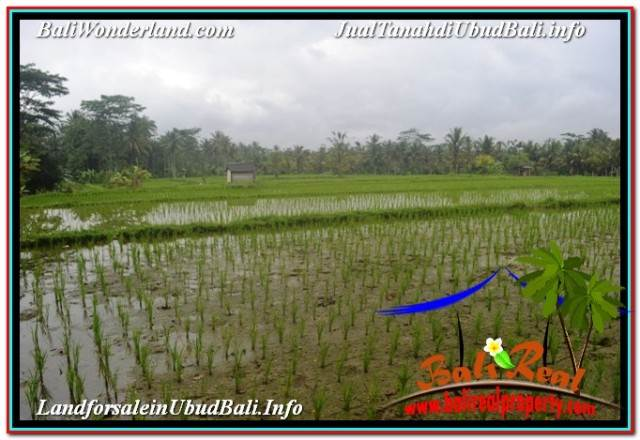 FOR SALE Magnificent PROPERTY LAND IN UBUD BALI TJUB673