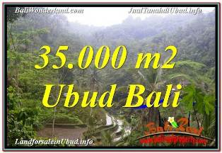 Magnificent PROPERTY LAND FOR SALE IN UBUD TEGALALANG TJUB674