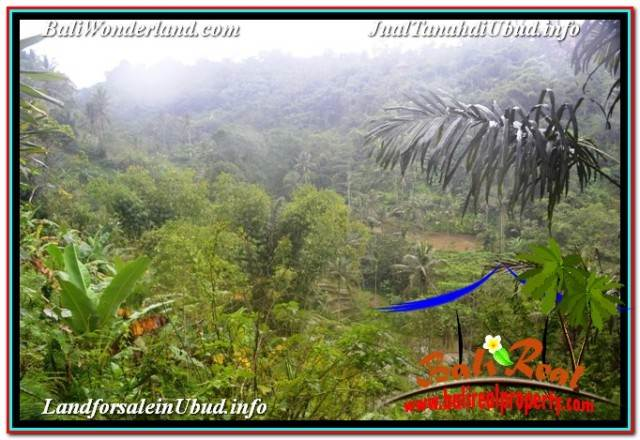 FOR SALE Beautiful PROPERTY 35,000 m2 LAND IN UBUD TEGALALANG BALI TJUB674