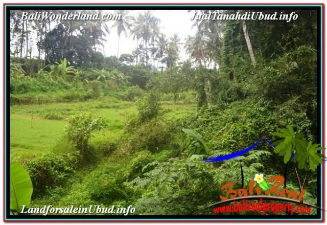SENTRAL UBUD 4,500 m2 LAND FOR SALE TJUB675