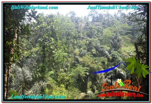Beautiful LAND SALE IN UBUD BALI TJUB676