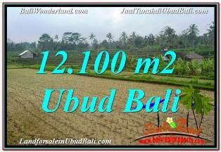 LAND SALE IN UBUD TJUB677
