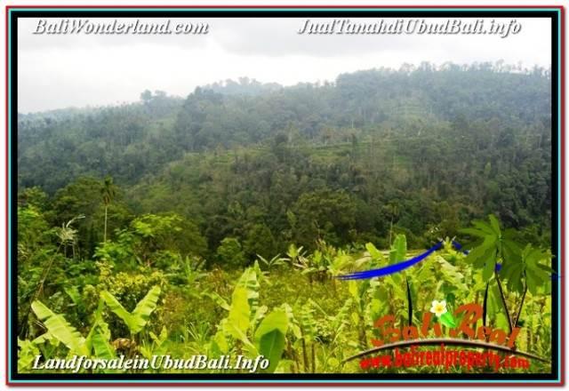 Affordable PROPERTY LAND FOR SALE IN UBUD PAYANGAN TJUB678