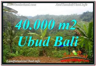 Magnificent UBUD BALI LAND FOR SALE TJUB679