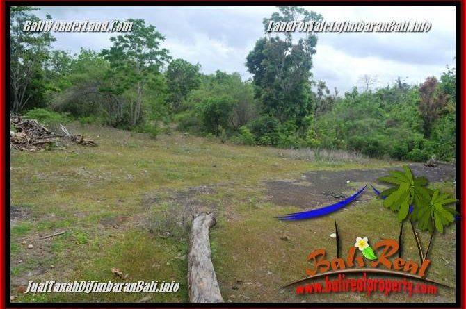 Beautiful LAND FOR SALE IN JIMBARAN UNGASAN TJJI133