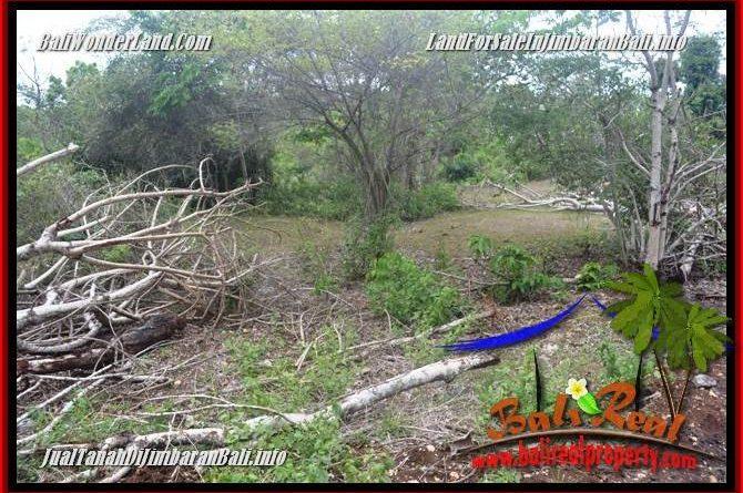 Exotic PROPERTY 2,000 m2 LAND FOR SALE IN JIMBARAN UNGASAN BALI TJJI133B