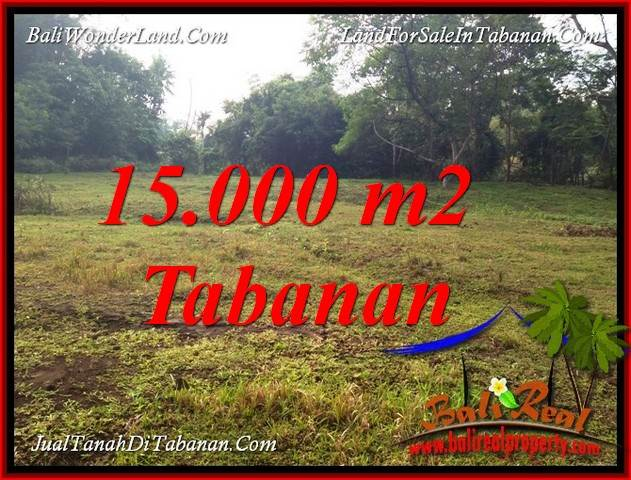 Beautiful PROPERTY 15,000 m2 LAND IN TABANAN KOTA BALI FOR SALE TJTB381