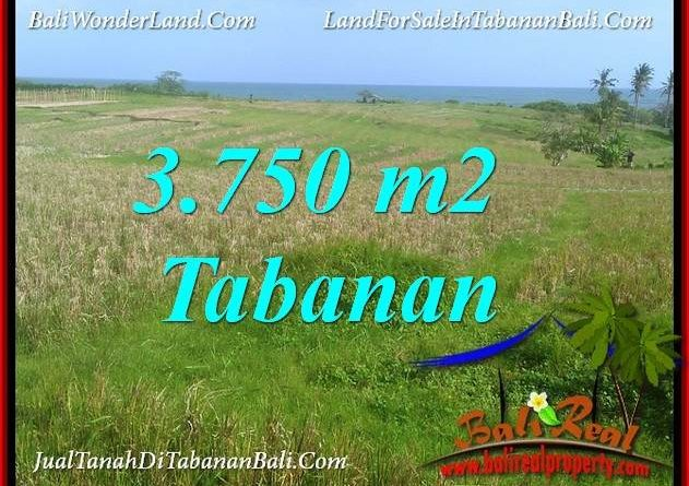 Exotic TABANAN SELEMADEG BALI 3,750 m2 LAND FOR SALE TJTB382