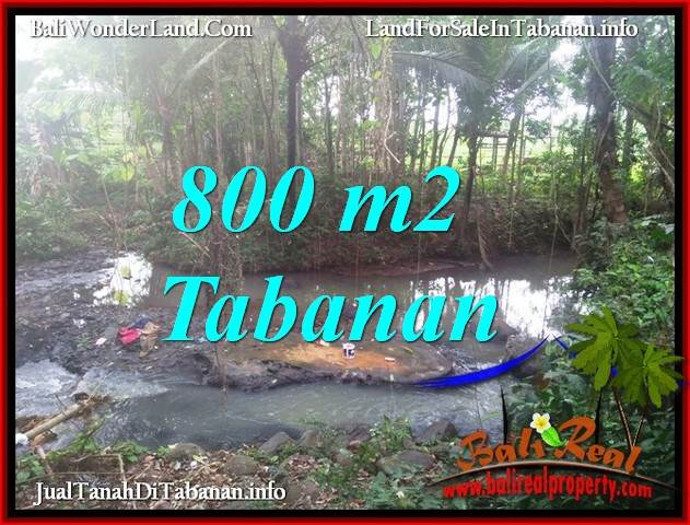 Magnificent PROPERTY TABANAN SELEMADEG BALI LAND FOR SALE TJTB384