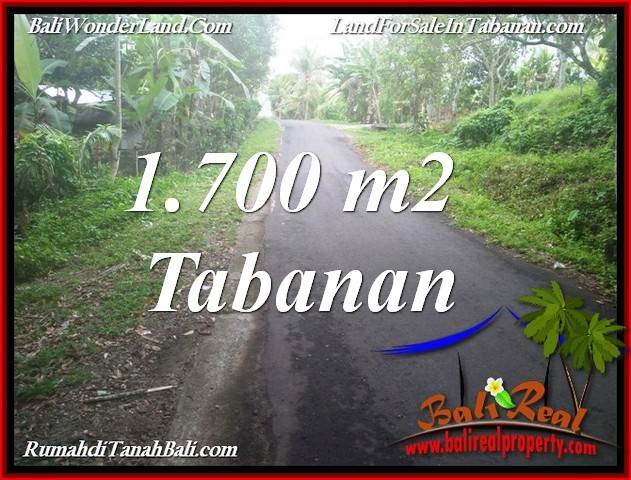 Magnificent LAND IN TABANAN SELEMADEG BALI FOR SALE TJTB385