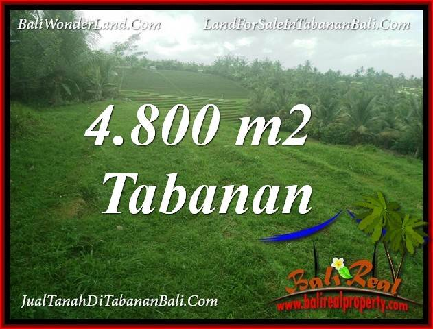FOR SALE Magnificent PROPERTY LAND IN TABANAN SELEMADEG BALI TJTB387