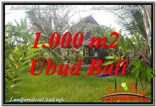 Beautiful SENTRAL UBUD BALI 1,000 m2 LAND FOR SALE TJUB680
