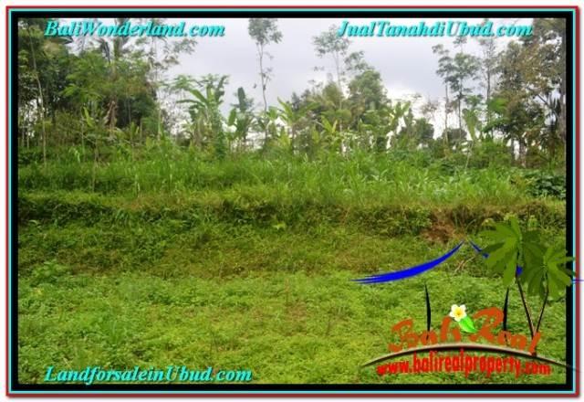 Beautiful 10,500 m2 LAND IN UBUD TAMPAK SIRING FOR SALE TJUB681