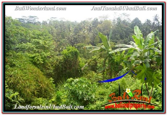 Affordable LAND FOR SALE IN UBUD TJUB682