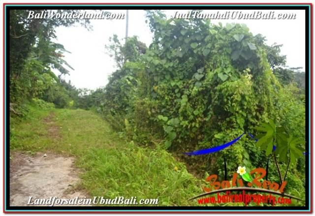 Affordable LAND FOR SALE IN UBUD TJUB682