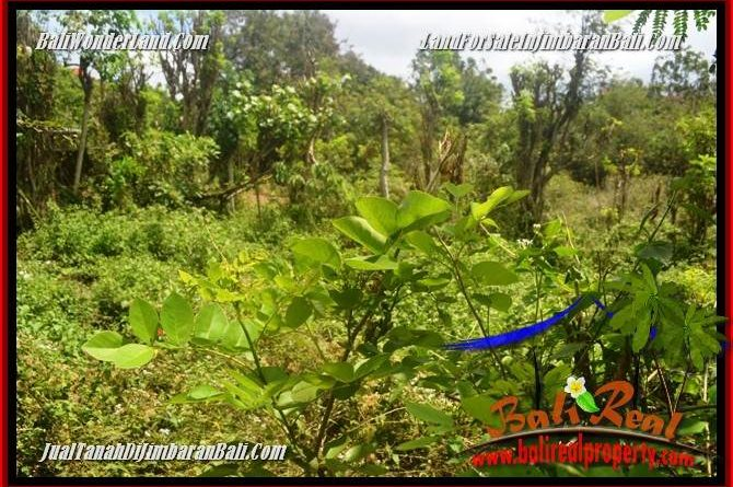 Magnificent 1,500 m2 LAND IN JIMBARAN ULUWATU FOR SALE TJJI128