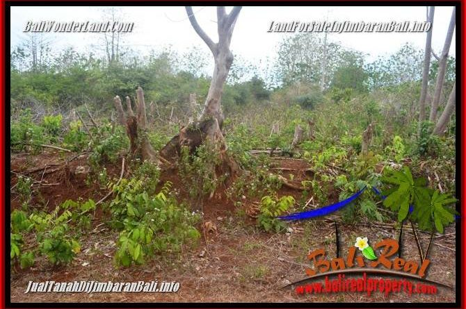Exotic PROPERTY LAND IN JIMBARAN UNGASAN FOR SALE TJJI129