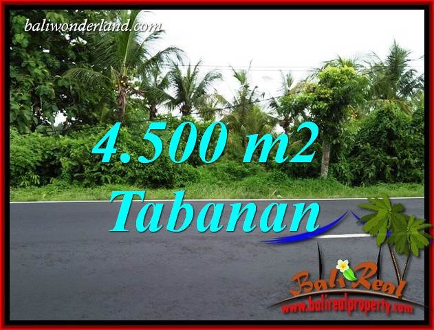 Exotic Property Land for sale in Tabanan Bali TJTB395