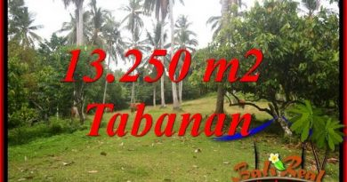 Affordable 13,250 m2 Land for sale in Tabanan Bali TJTB403