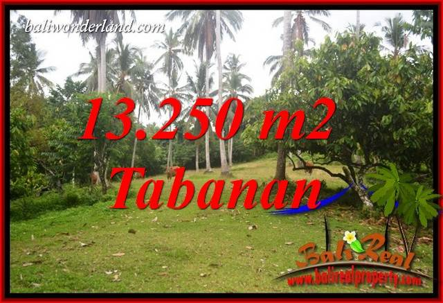 Beautiful Property Land in Tabanan Bali for sale TJTB403