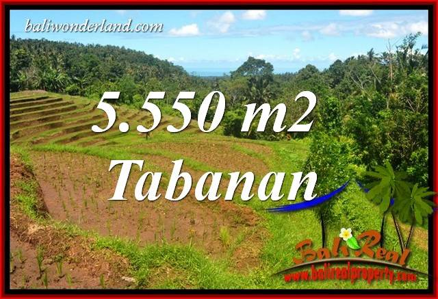 FOR sale Beautiful Property Land in Tabanan Bali TJTB405