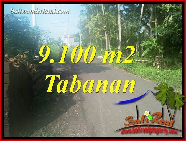 FOR sale Beautiful Property 9,100 m2 Land in Tabanan Kerambitan TJTB407