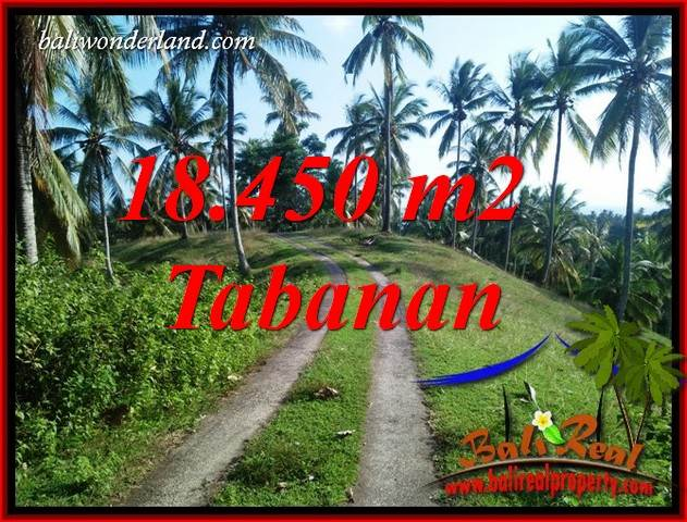 Magnificent 18,450 m2 Land for sale in Tabanan Selemadeg BALI TJTB410
