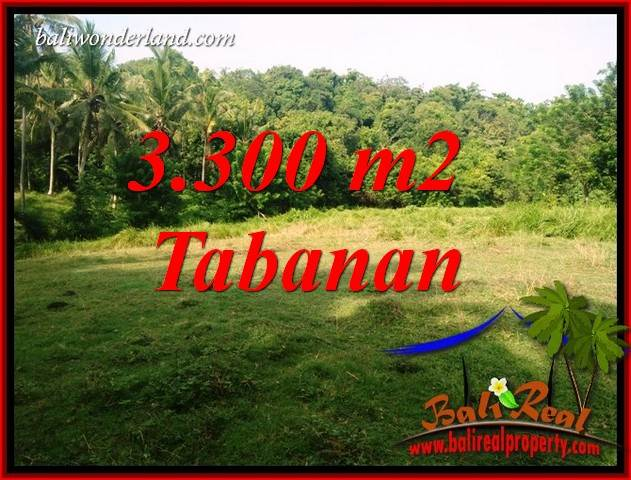 Affordable Property Tabanan Selemadeg 3,300 m2 Land for sale TJTB413