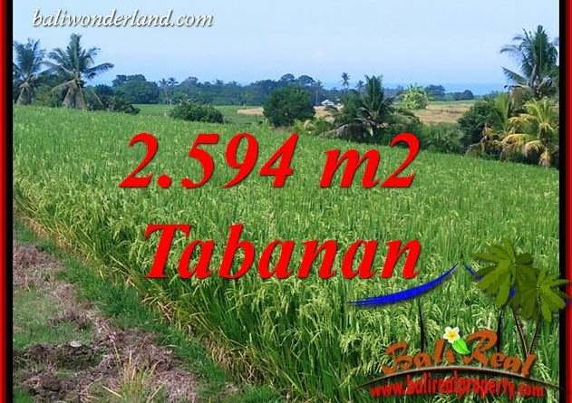 Affordable Property 2,594 m2 Land in Tabanan Selemadeg for sale TJTB414