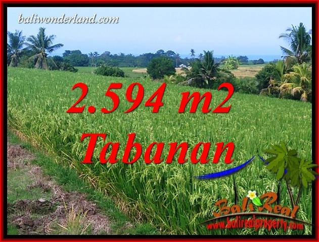 Affordable Property 2,594 m2 Land in Tabanan Selemadeg Bali for sale TJTB414