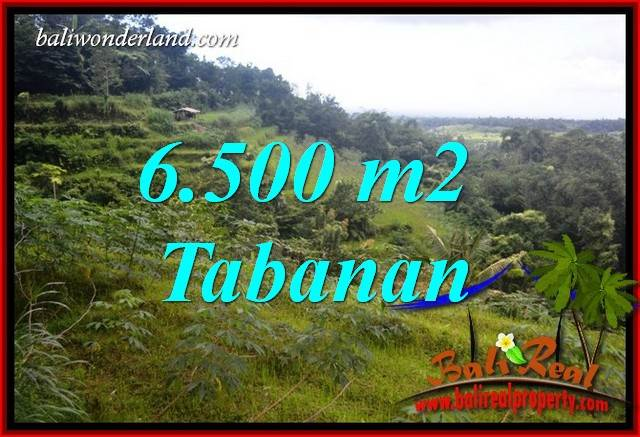 Beautiful 6,500 m2 Land sale in Tabanan Penebel TJTB416