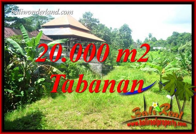 Affordable 20,000 m2 Land sale in Tabanan Bali TJTB418