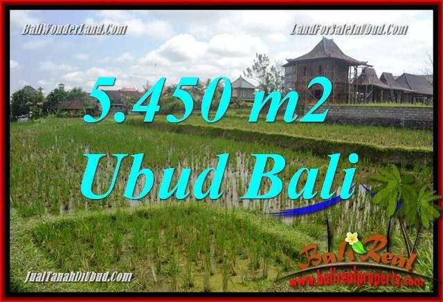 Exotic Property Land in Ubud Bali for sale TJUB688