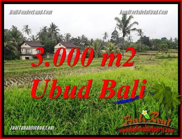 Affordable Ubud Land for sale TJUB698