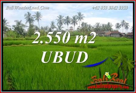 Exotic Ubud Bali 2,550 m2 Land for sale TJUB700