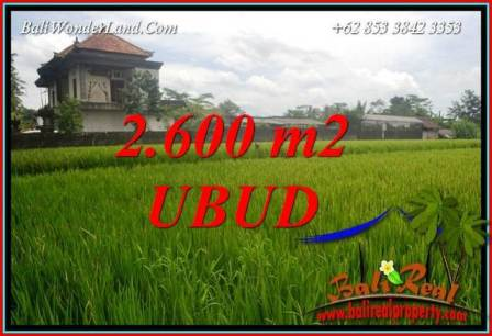 Beautiful Property Land for sale in Ubud Bali TJUB701