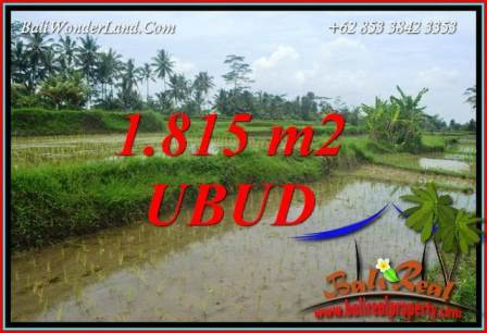 1,815 m2 Land in Ubud Bali for sale TJUB703