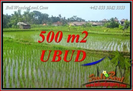 Beautiful 500 m2 Land for sale in Sentral Ubud Bali TJUB708