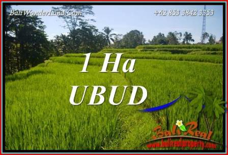 Exotic Property 10,000 m2 Land for sale in Ubud Tegalalang Bali TJUB715