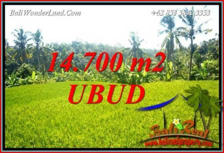 Exotic Land in Ubud for sale TJUB717