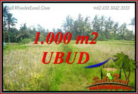 Affordable Property Land in Ubud for sale TJUB727