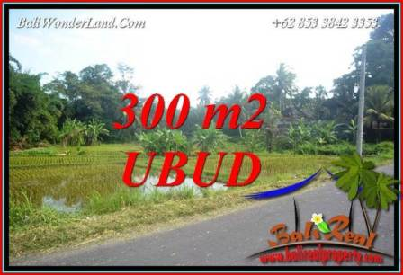 Magnificent Property 300 m2 Land in Sentral Ubud Bali for sale TJUB730