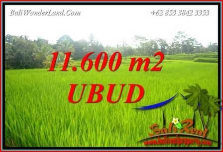 Beautiful Property Land in Ubud Bali for sale TJUB732